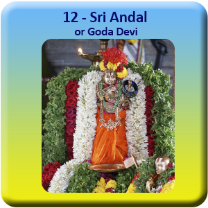 12 - Andal